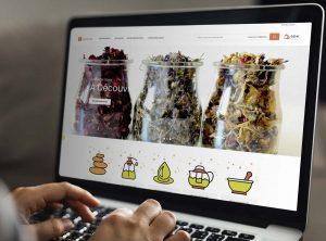 Site Internet Essencialis.fr, spécialiste en huiles essentielles