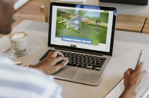 Site Internet du Domaine du Moulin de Trimeule